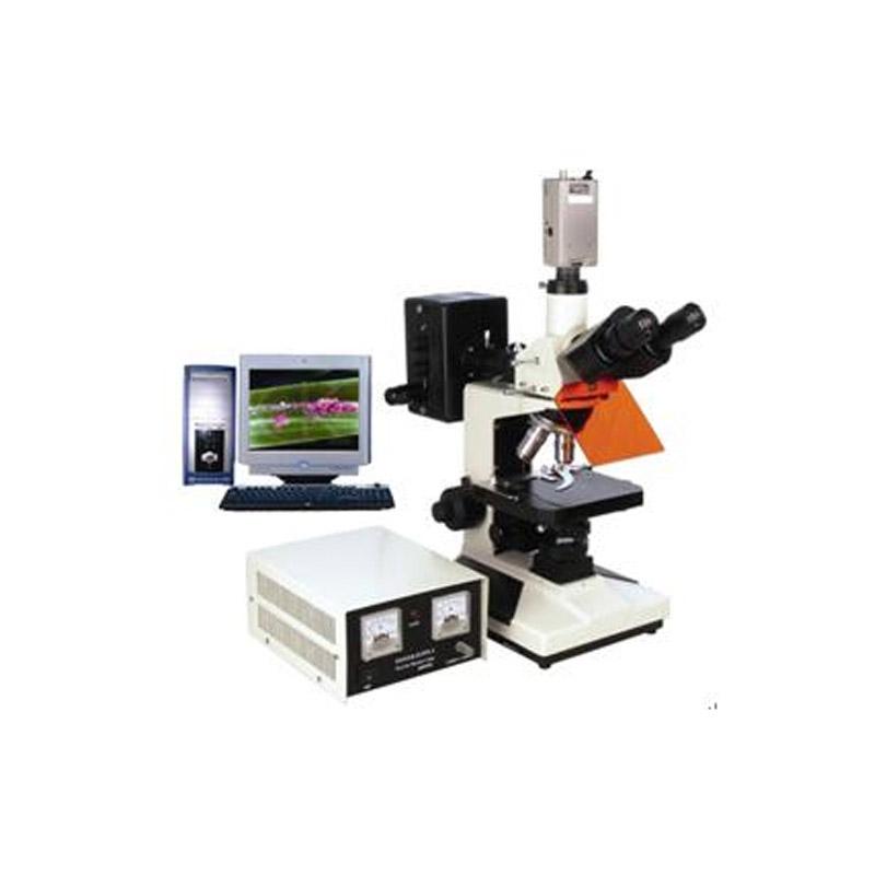 數碼型熒光顯微鏡BFM-330系列