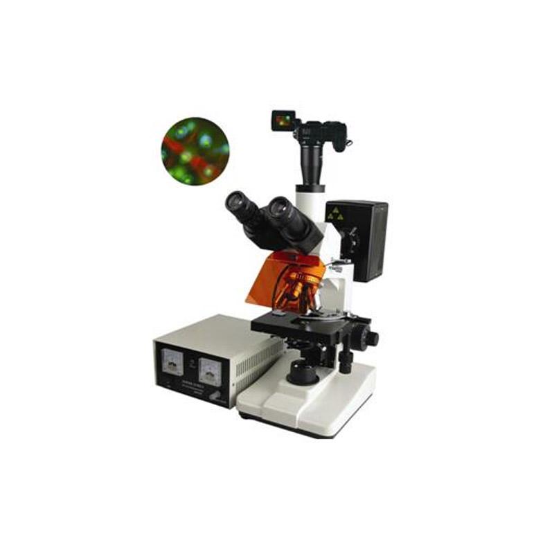 數碼型熒光顯微鏡BFM-400系列