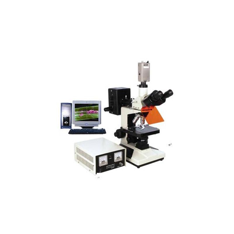 電腦型熒光顯微鏡BFM-300系列