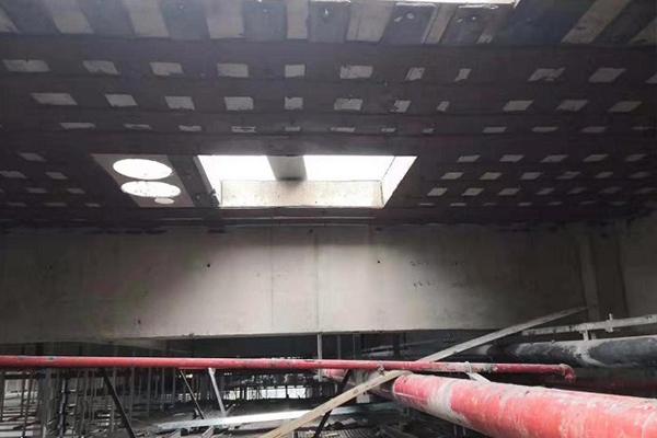 浙江維通利華實驗動物技術有限公司廠房 加固工程